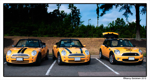photo, three yellow minis